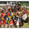 Indian Tribals(Issues and challenges)